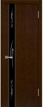 Дверь Плаза 1
